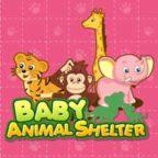 baby-animal-shelter