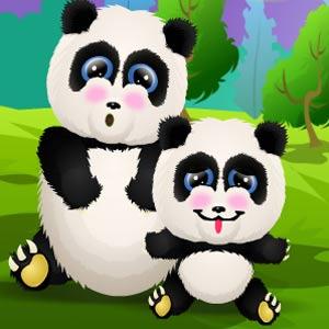 Baby Lisi Newborn Panda